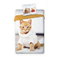 Pekný hustý mačička pics