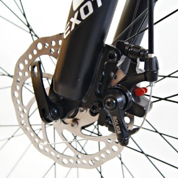 """EXOTIC 29 pánsky horský bicykel 29"""" 2019"""