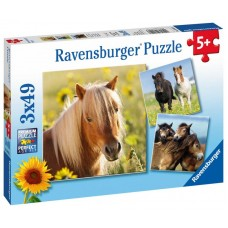 Ravensburger Puzzle Koníky 3 x49D Preview